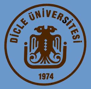 Dicle University